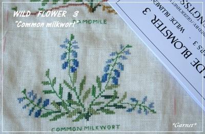 Wildflower_common